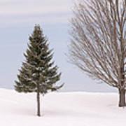 Winter 2015 Art Print