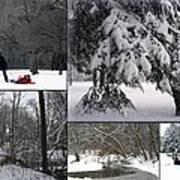 Winter At Petrifying Springs Park Art Print