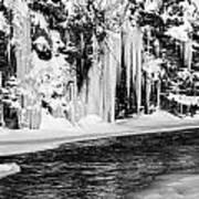 Winter At The Creek Monochrome Art Print