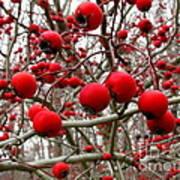 Winter Berryscape Art Print