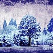 Winter Blues Art Print