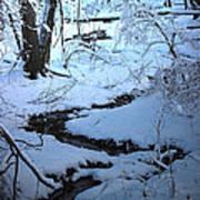 Winter Brook Art Print