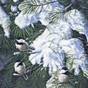 Winter Chickadees Art Print