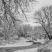 Winter Creek In Black And White Art Print