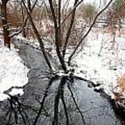 Winter Ditch Art Print