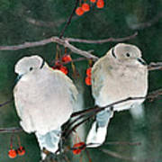 Winter Doves Art Print