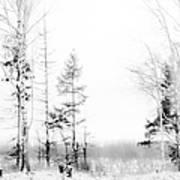 Winter Drawing Art Print