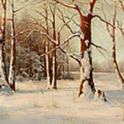 Winter Dream Art Print
