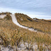 Winter Dune Art Print