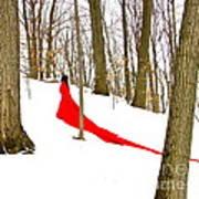 Winter Empress Art Print