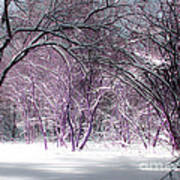 Winter Faeries Art Print