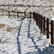 Winter Fence Art Print