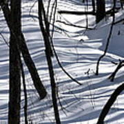 Winter Hillside Art Print