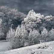 Winter - IIi Art Print by Akos Kozari