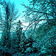Winter In Denmark Art Print