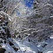 winter in the Bavarian alps 2 Art Print