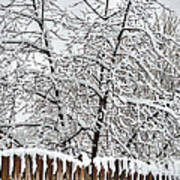 Winter In The Heartland 1 Art Print