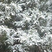 Winter In The Heartland 2 Art Print