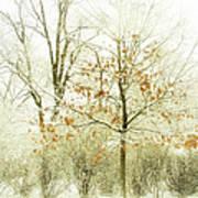 Winter Leaves Art Print