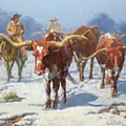 Winter Longhorns Art Print