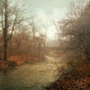 Winter Mist Art Print