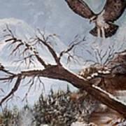 Winter Nesting Art Print