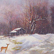Winter Palette Art Print by Howard Scherer