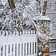 Winter Park Fence Art Print by Elena Elisseeva