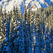 Winter Peak Art Print