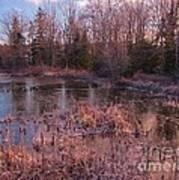 Winter Pond Landscape Art Print