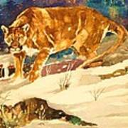 Cougar On The Prowl In Winerer Art Print