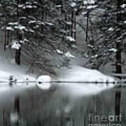 Winter Reflection 004 Art Print