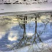 Winter Reflections Art Print