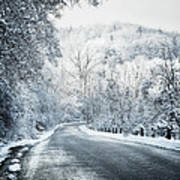 Winter Road In Forest Art Print
