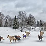 Winter Run Art Print by Peter Lindsay