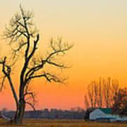Winter Season Country Sunset Art Print