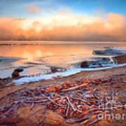 Winter Shore Art Print