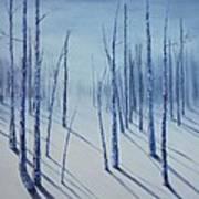 Winter Splendor Art Print
