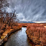 Winter Storm Over Owens River Art Print by Cat Connor