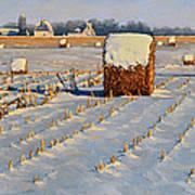 Winter Stubble Bales Art Print