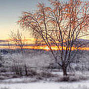 Winter Sunset Art Print by Don Powers
