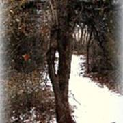 Tree With Ice Art Print