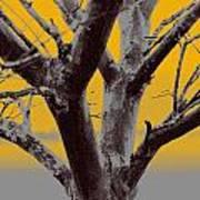Winter Trees In Yellow Gray Mist 2 Art Print