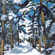 Winter Way Art Print