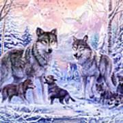 Winter Wolf Family  Art Print