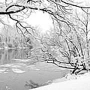 Winter Wonderland In Black And White Art Print
