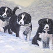 Winter Wonderland Print by John Silver
