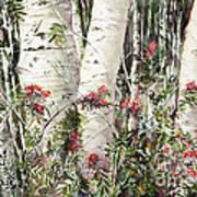 Winter Wood Jpg Art Print