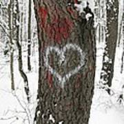 Winter Woods Romance Art Print
