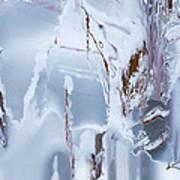 Winterland Art Print